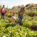 ACE Gets Green Fingered For National Allotments Week