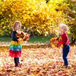 ACE Autumn crafts to create this half term